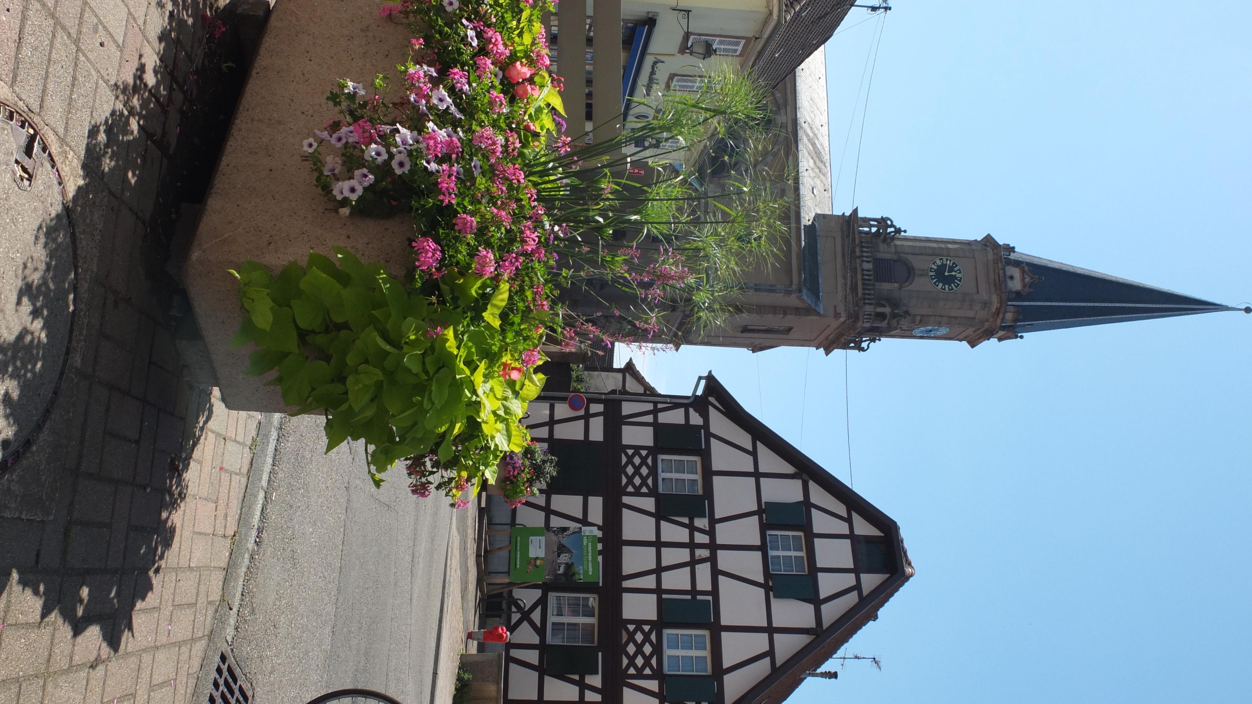 Ville d'Erstein | Alcys Résidences