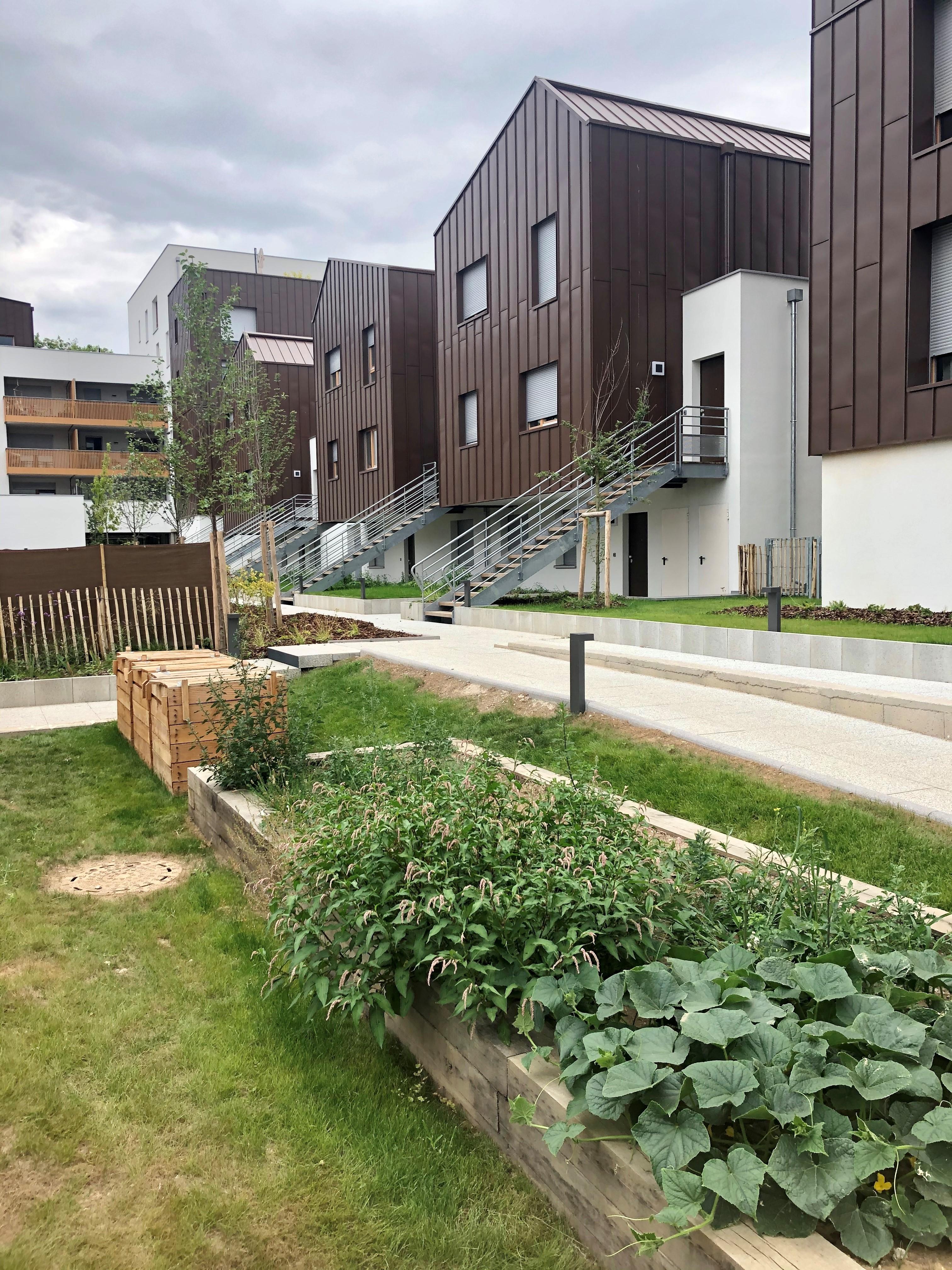 Verdure devant la résidence Alcys Eko2 à la Meinau | Alcys Réalisations
